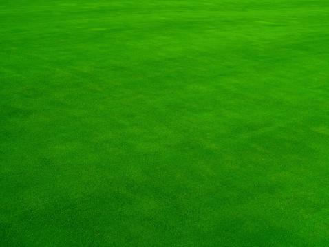 Grass「Real Putting Green」:スマホ壁紙(8)