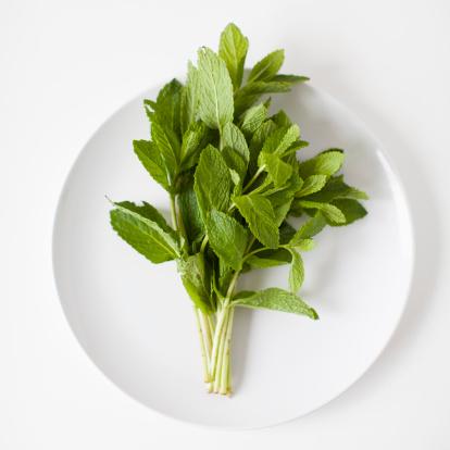 Mint Leaf - Culinary「Bunch of mint on plate, studio shot」:スマホ壁紙(8)