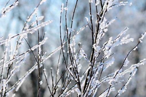 Snowdrift「frost」:スマホ壁紙(5)