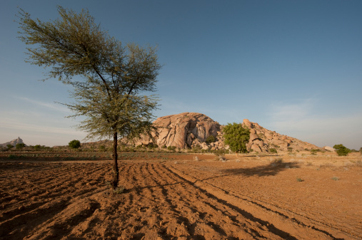 Frowning「Aravelli hills with arable land, Rajasthan, India」:スマホ壁紙(9)