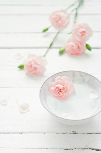 カーネーション「Dianthus flower with bowl of water on wooden table, close up」:スマホ壁紙(11)