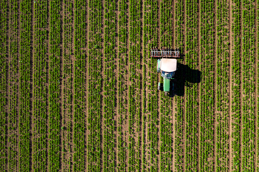 Crop - Plant「Tractor cultivating field, view from above」:スマホ壁紙(16)