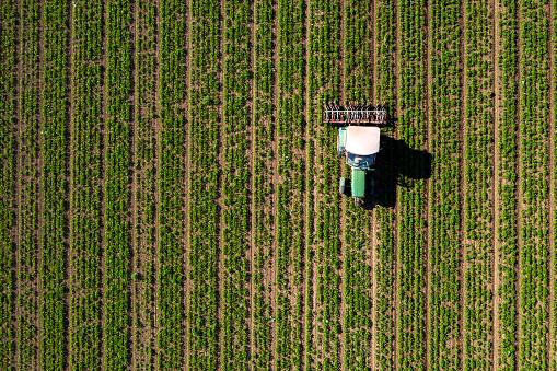 作物「トラクター栽培場、上から見る」:スマホ壁紙(6)