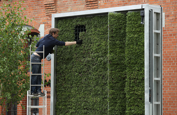 New Business「Green City Solutions Uses Moss To Filter City Air」:写真・画像(14)[壁紙.com]