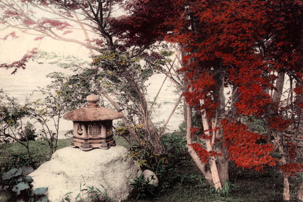 Spencer Arnold Collection「Glories Of Autumn」:写真・画像(12)[壁紙.com]