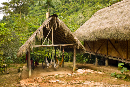 Eco Tourism「Jungle Hut」:スマホ壁紙(18)