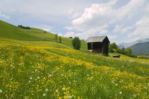 たんぽぽ「Alpine Meadow With Shack」:スマホ壁紙(11)