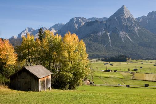 Austria「alpine meadow near lermoos」:スマホ壁紙(10)