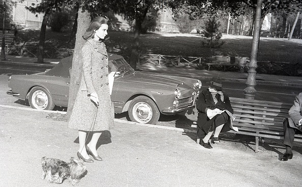 Bench「The British actress Audrey Hepburn walking with her dog in Rome in 1959」:写真・画像(14)[壁紙.com]