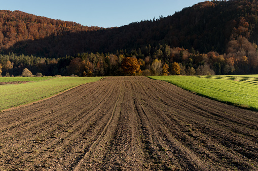 Planting「Plowed field ready for sowing」:スマホ壁紙(14)