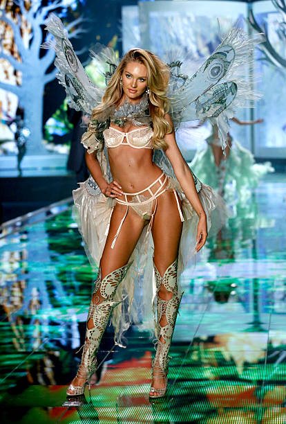 2014 Victoria's Secret Runway Show  - Swarovski Crystal Looks:ニュース(壁紙.com)