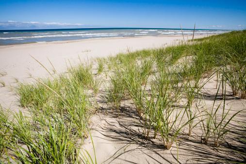 Water's Edge「Grassy Sand Dunes and Lake Michigan」:スマホ壁紙(16)
