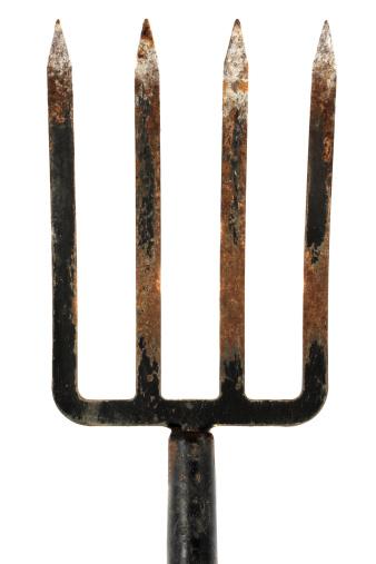 Gardening Fork「garden fork on white」:スマホ壁紙(19)