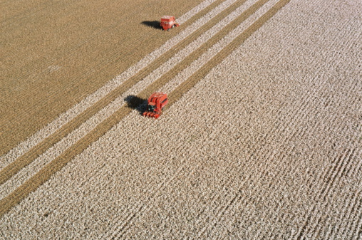 Harvesting「Cotton harvest, aerial view, New South Wales, Australia」:スマホ壁紙(13)