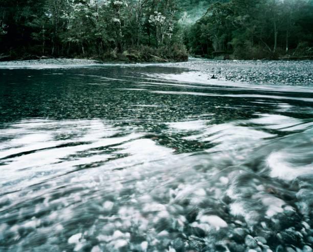 Pristine alpine Fiordland New Zealand river:スマホ壁紙(壁紙.com)