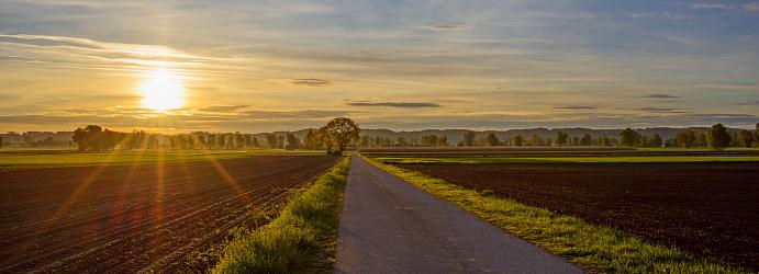 Savannah「Road in countryside at sunrise, Mindelheim, Bavaria, Germany」:スマホ壁紙(18)