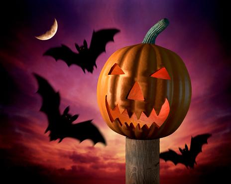 ジャックオーランタン「Scary Pumpkin and Bats」:スマホ壁紙(8)