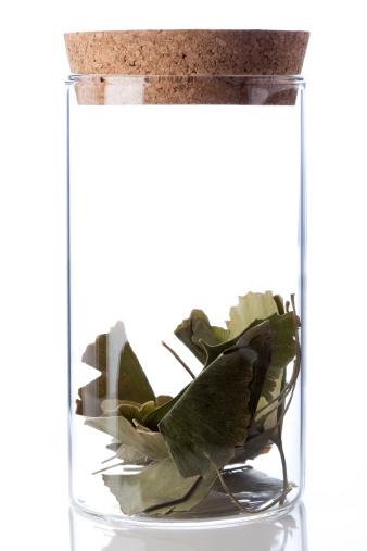 Specimen Holder「Chinese medicinal herb ginkgo leaves in glass bottle」:スマホ壁紙(1)