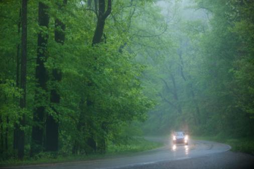 雨「A scenic and empty road」:スマホ壁紙(11)