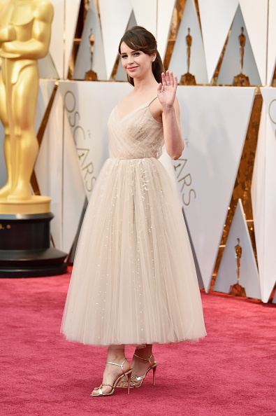 アカデミー賞「89th Annual Academy Awards - Arrivals」:写真・画像(10)[壁紙.com]