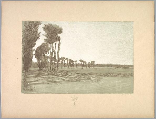 Grass Family「Suite De Paysages: Landscape」:写真・画像(7)[壁紙.com]