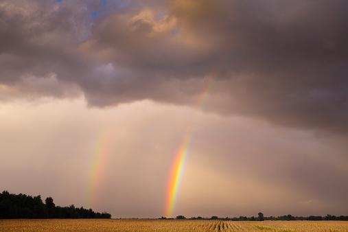 Double Rainbow「Receding thunderstorm over cornfield」:スマホ壁紙(8)