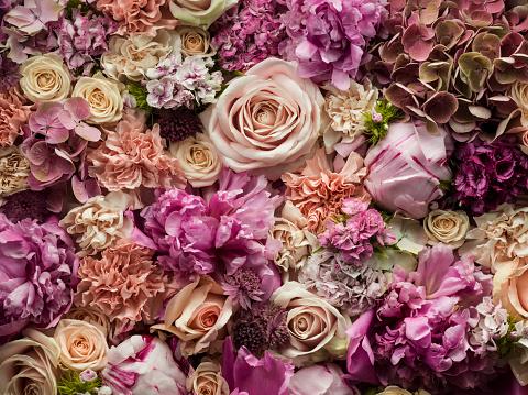 Pastel「Fresh cut flowers, detail」:スマホ壁紙(7)