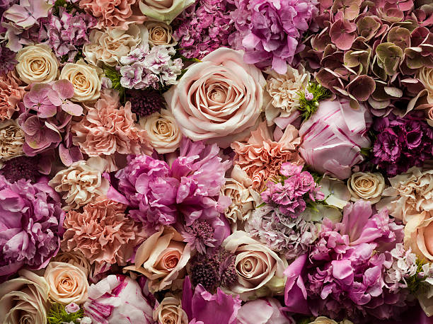 Fresh cut flowers, detail:スマホ壁紙(壁紙.com)