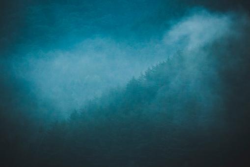 Fog「Mist rolls over forest」:スマホ壁紙(18)