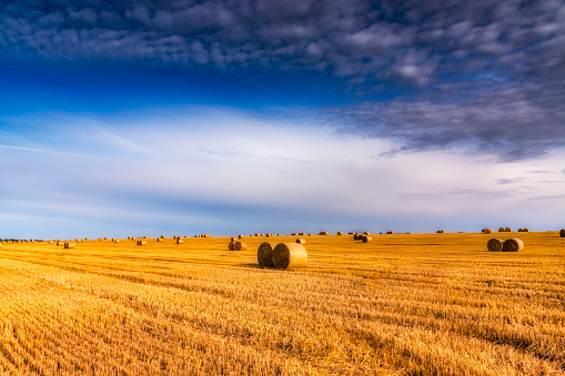 East Lothian「United Kingdom, Scotland, East Lothian, field and hay bales in the evening light」:スマホ壁紙(13)
