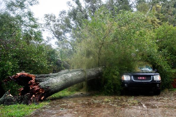 Damaged「Hurricane Matthew Bears Down On Atlantic Coast」:写真・画像(6)[壁紙.com]