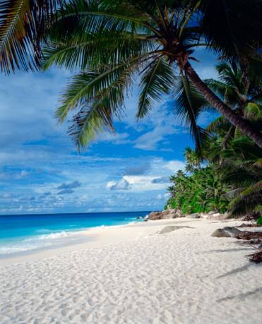 ビーチ「Beach seashore, Seychelles」:スマホ壁紙(11)
