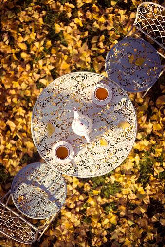 Teapot「tea time under a ginkgo tree in autumn」:スマホ壁紙(10)