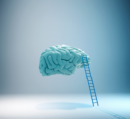 Brain「Higher learning」:スマホ壁紙(6)