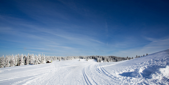 クロスカントリースキー「スキー選手の美しい冬 day.Rogla ,スロベニア」:スマホ壁紙(8)