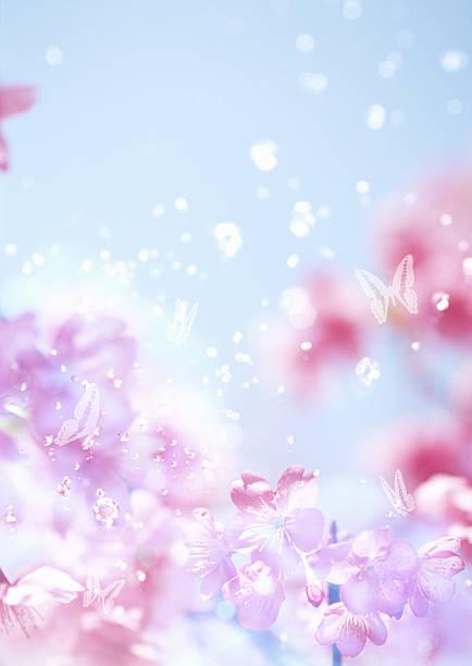 Spring has Come:スマホ壁紙(壁紙.com)