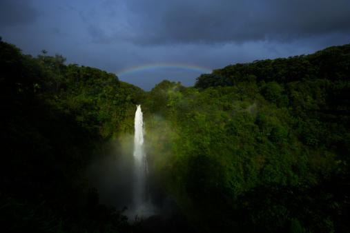 Akaka Falls「Rainbow appears over Akaka Falls at morning」:スマホ壁紙(12)