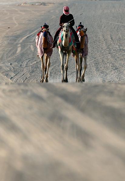 Francois Nel「Daily Life In Dubai」:写真・画像(16)[壁紙.com]