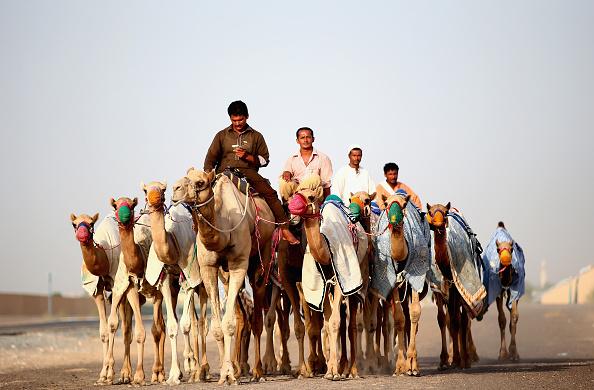 Francois Nel「Daily Life In Dubai」:写真・画像(15)[壁紙.com]