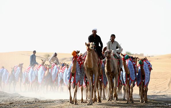 Francois Nel「Daily Life In Dubai」:写真・画像(7)[壁紙.com]