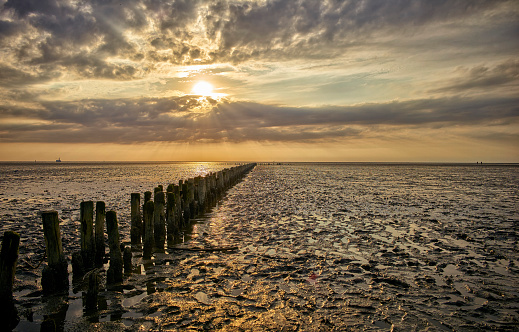 Wooden Post「Germany, Dithmarschen, Friedrichskoog-Spitze, Sunset at the North Sea tidelands」:スマホ壁紙(19)