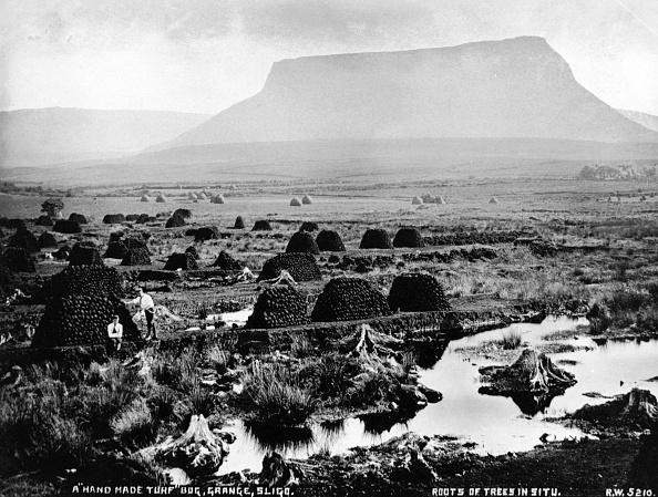 Mountain「Sligo Bog」:写真・画像(19)[壁紙.com]