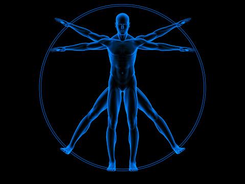 Arm「Vitruvian man」:スマホ壁紙(14)