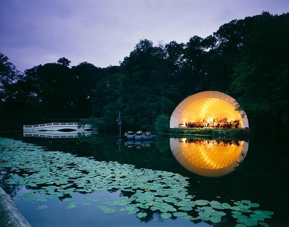 葉・植物「Concert Bowl By The Lake」:写真・画像(5)[壁紙.com]