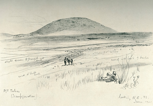 Mammal「Mount Tabor」:写真・画像(17)[壁紙.com]