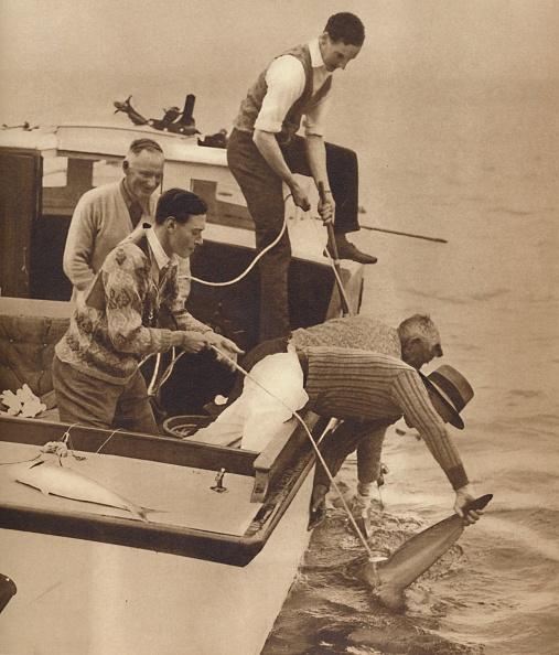 Recreational Pursuit「Big Game Fishing」:写真・画像(10)[壁紙.com]