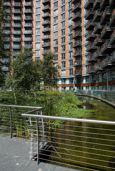造園「Water feature near apartments, East India, East London, UK」:写真・画像(19)[壁紙.com]