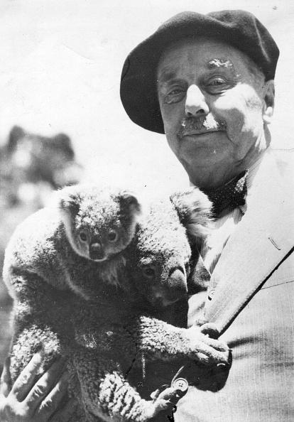 Koala「H G  Wells」:写真・画像(8)[壁紙.com]