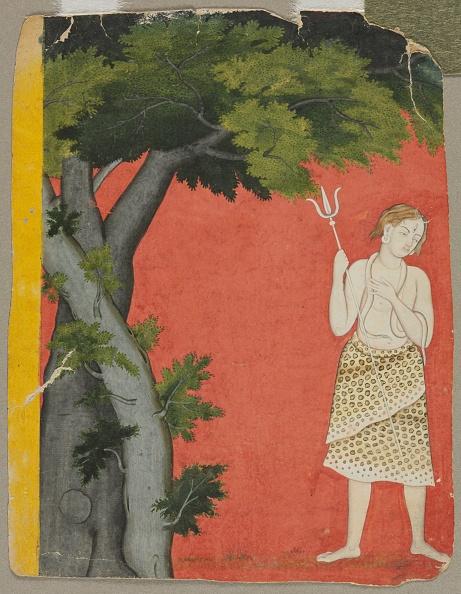 Animal Eye「Shiva Under Trees」:写真・画像(2)[壁紙.com]