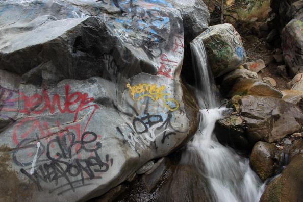 Wilderness Area「Vandals Target Los Angeles Area National Forests」:写真・画像(11)[壁紙.com]